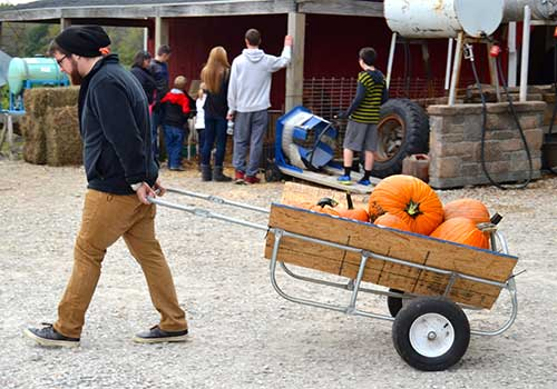 Pick Your Own Pumpkins and Fall festival at Dull's Tree Farm in Thorntown, IN near Frankfort and Lebanon.